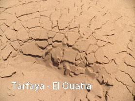 Tarfaya-El Ouatia