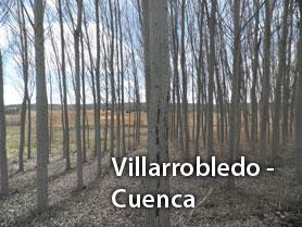 Villarrobledo-Cuenca